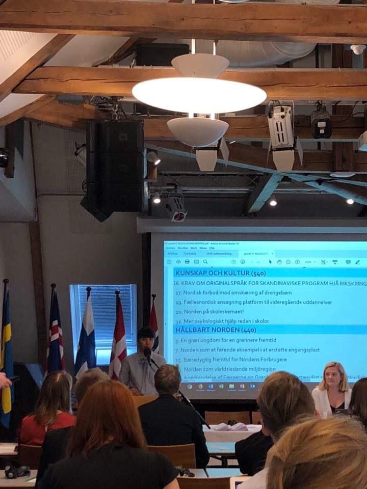 Ordförande, Iris Dager, presenterar FNUF:s resolutioner i plenum.