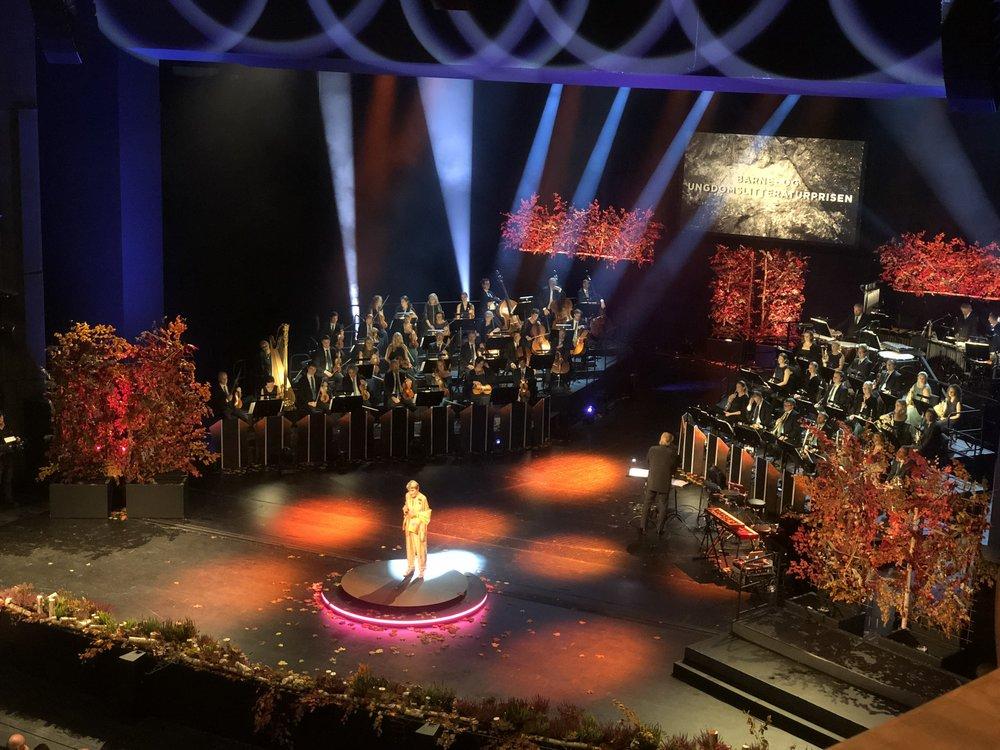 Gunna Bergström (Alfons Åberg författaren!) presenterar Nordiska rådets barn- och ungdomslitteraturpris på prisgalan i närvaro av kungligheter, ministrar och andra gäster.