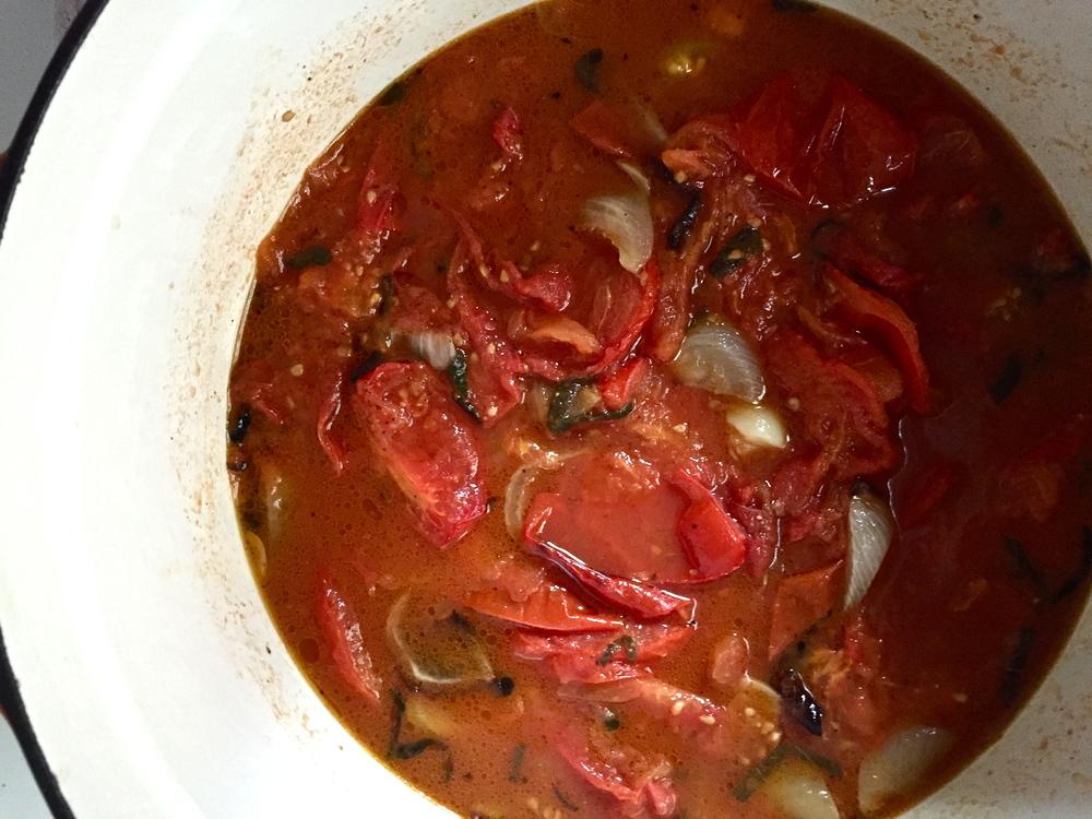 tomato in pot.jpg