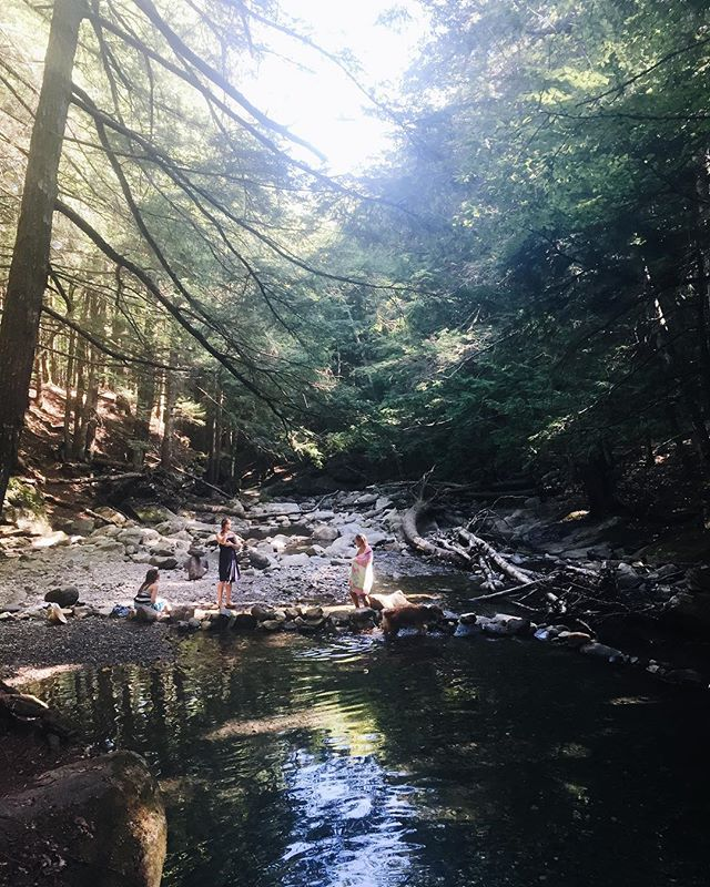 VT trips and skinny dips 🌿✨⛺️