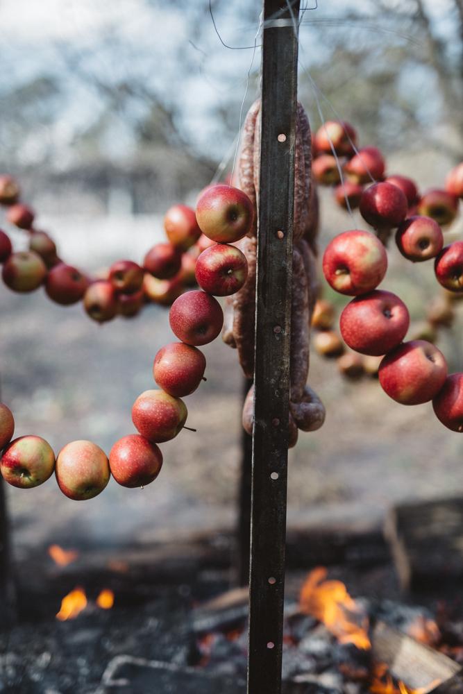 SG_Logan Brae Orchards_by_Luisa Brimble-838.jpg
