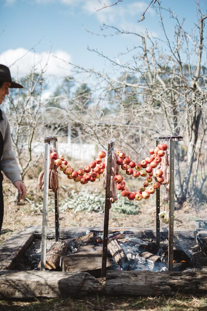 SG_Logan Brae Orchards_by_Luisa Brimble-608.jpg
