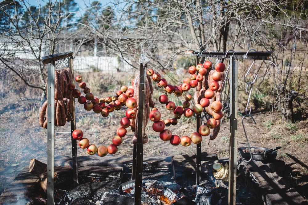 SG_Logan Brae Orchards_by_Luisa Brimble-1674.jpg