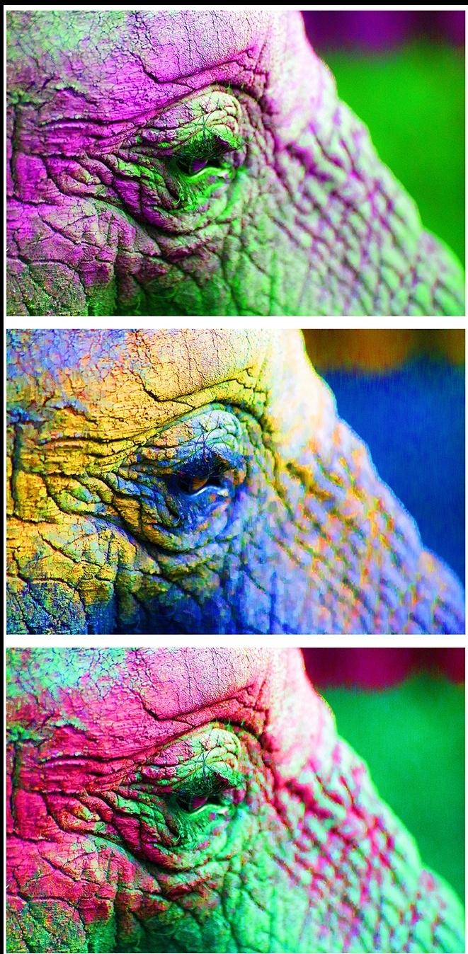 elephant eye VERT10x26.  2.O psd-s.jpg