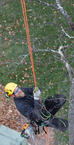 Climbing fixed ropes using a prussik hitch.