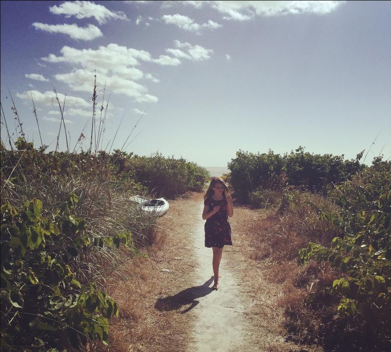 maple-on-beach.jpg