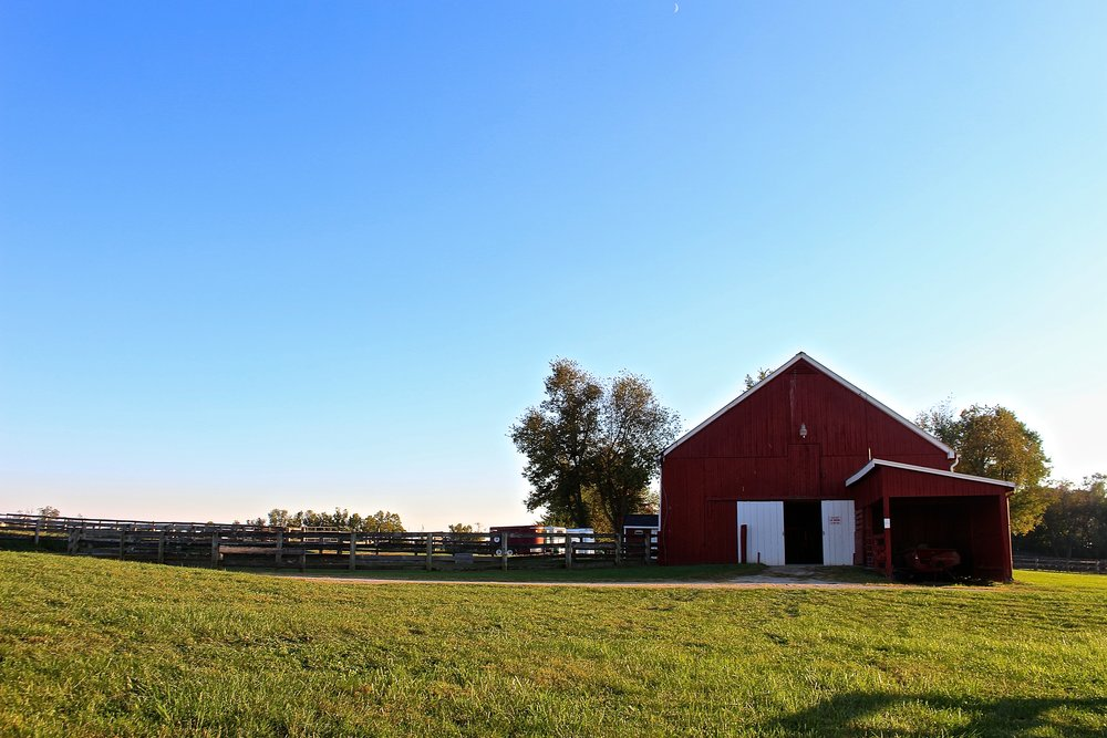 Haylands Farm, Lexington, KY.