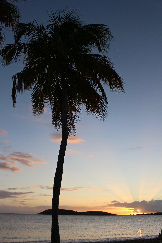 Sun Bay, Vieques, Puerto Rico.