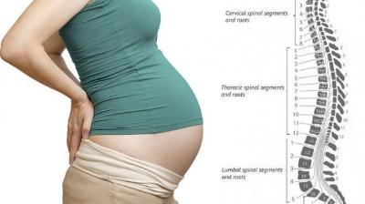 pelvic pain while pregnant
