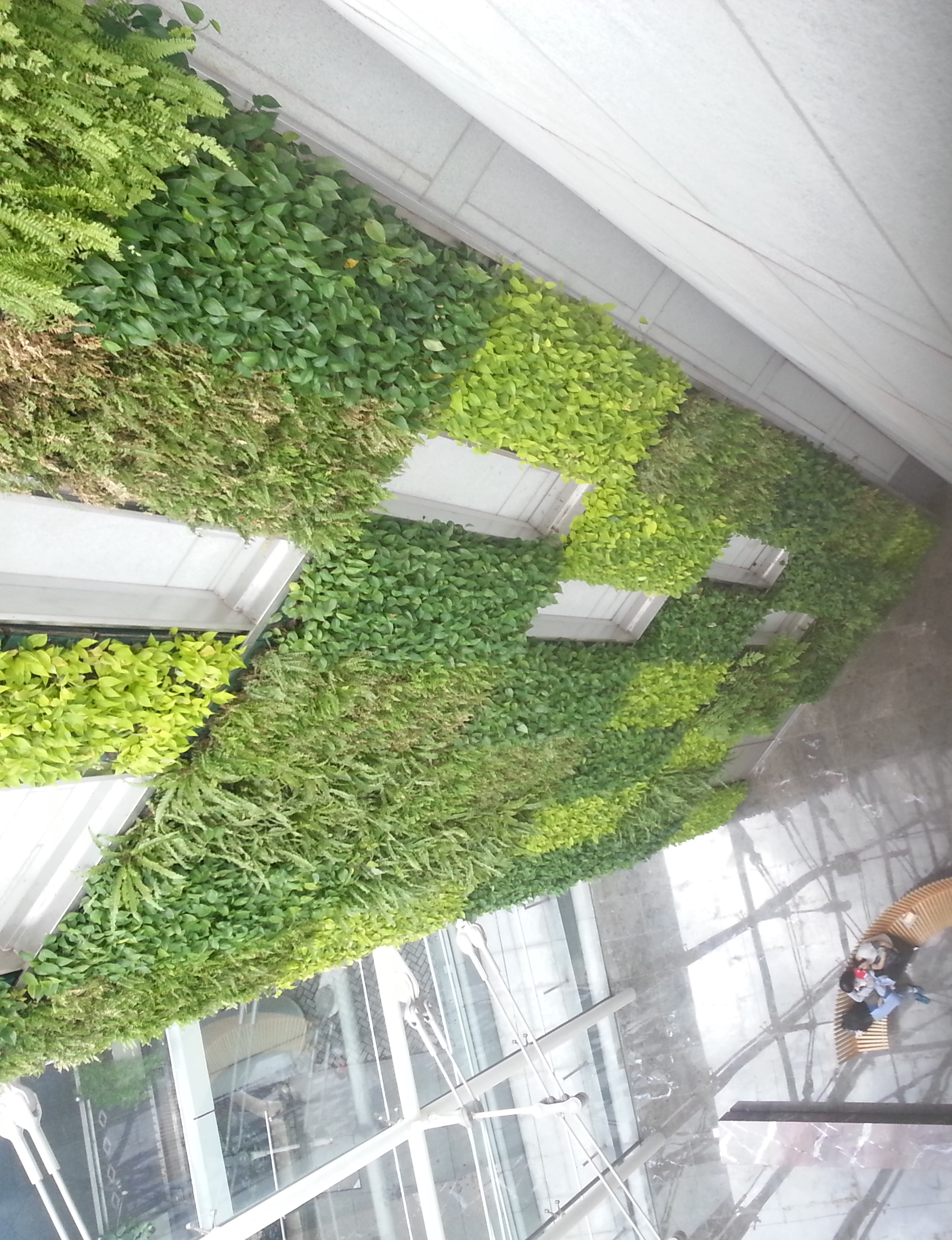 Green Wall in ITC