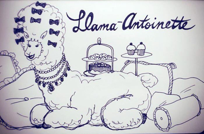 llama-antoinette.jpg