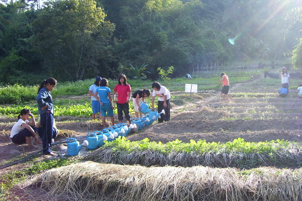 Students growing their own vegetables Monsaengdao