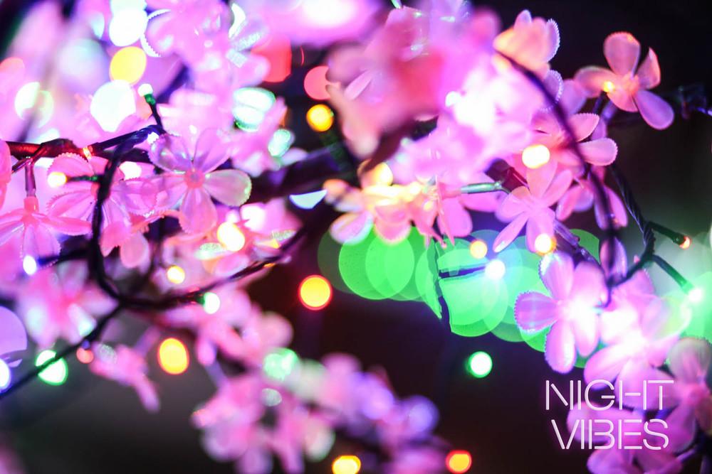 NIGHT VIBES 041015 (77 of 78).jpg