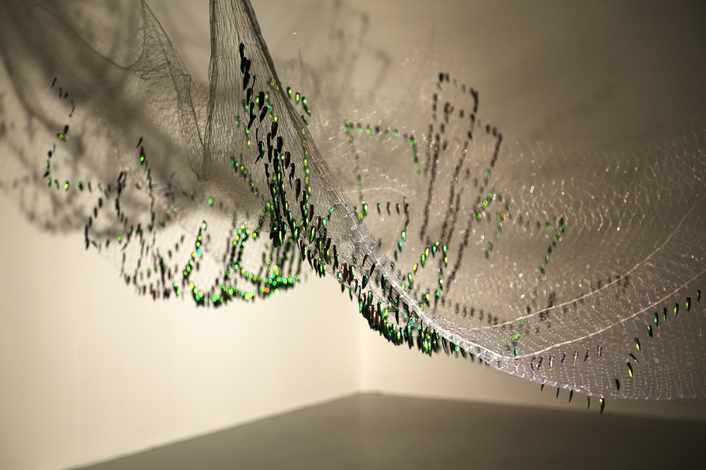 Shoal Installation -   Thai fishing net, Sternocera Aequistignata beetle wings. 2015