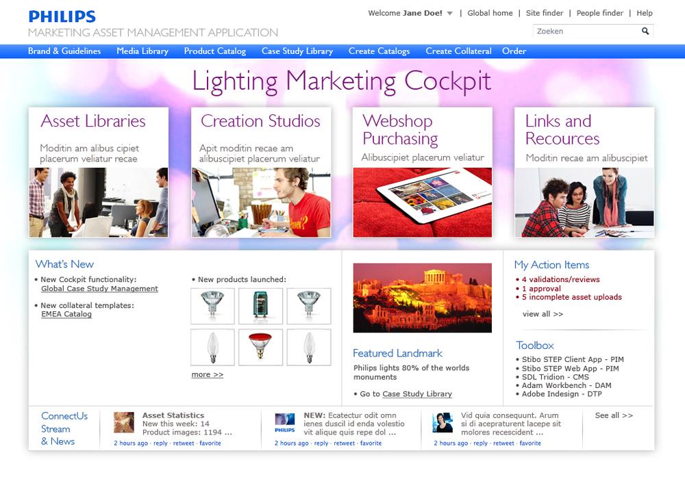 philips marketing database portal design