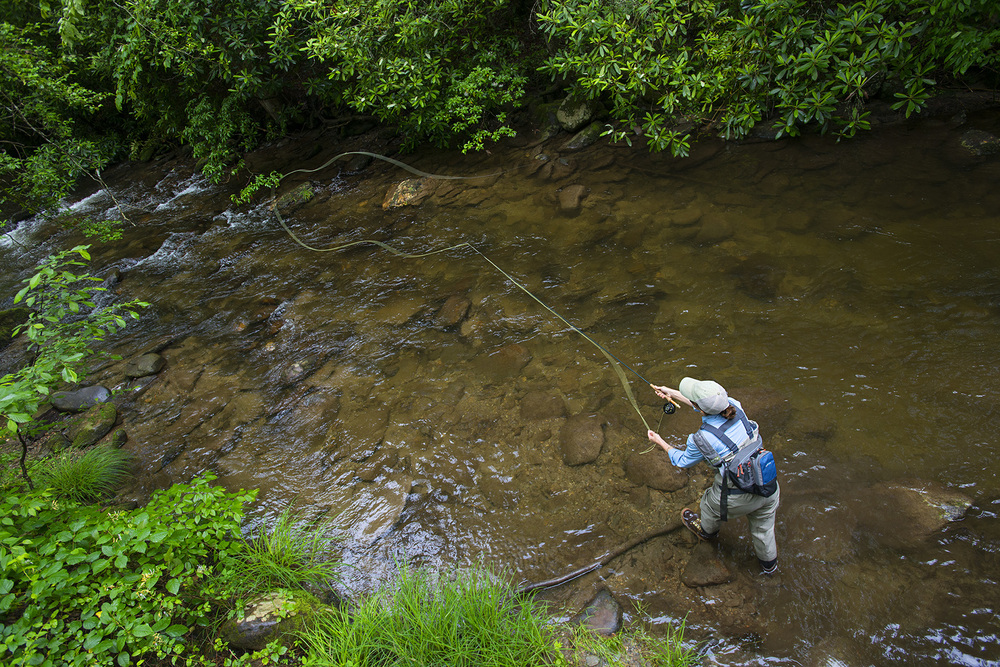 cool-trout-fly-fishing-stream-casting-picture