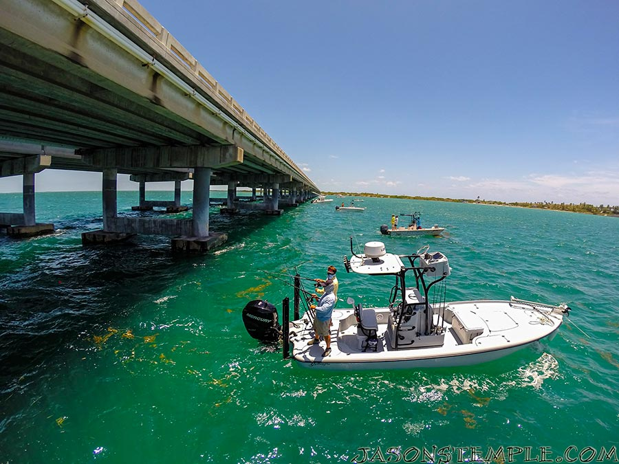 Bahia honda tarpon 2 show photog blog by jason stemple for Bahia honda fishing