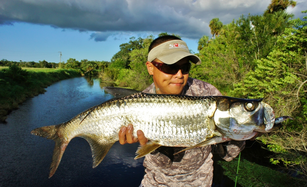 baby-tarpon-on-fly-in-the-canals-of-the-florida-keys-backyard