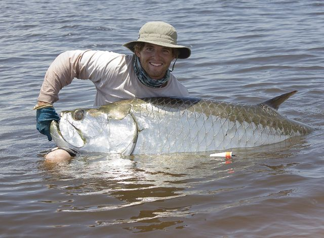 This angler is getting a great picture of this giant tarpon and putting very little stress on this amazing fish