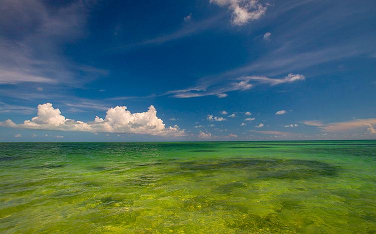 Where Can I Find Tide Station Information? — Saltwater