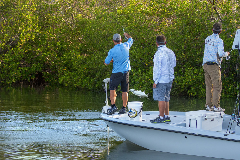 As we were catching bait, tarpon were rolling nearby.  We took a few minutes to catch a few in the early morning light