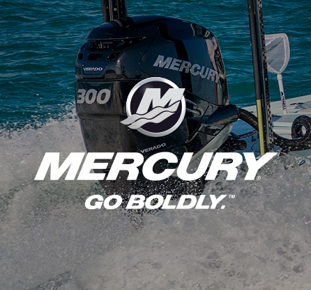 Mercury-13.png