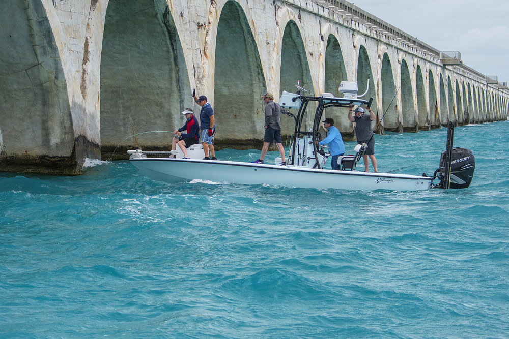 The bridge is always the most challenging obstacle when fighting a tarpon