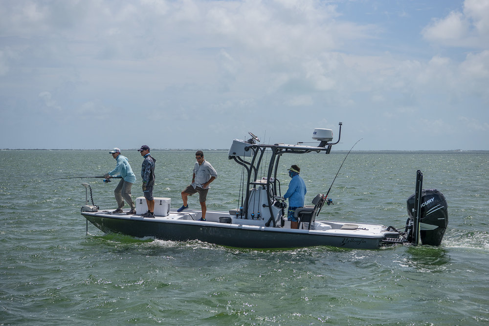 Yellowfin & Mercury Marine