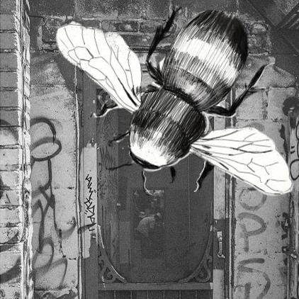 пчела2 копия.jpg