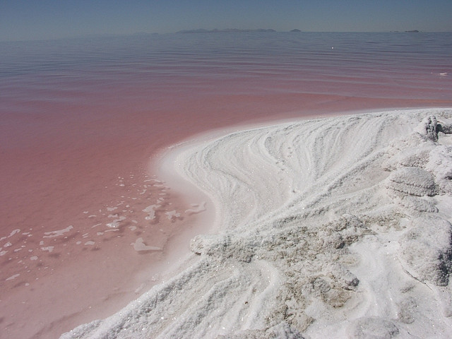Pink curve along the Spiral Jetty,   the Great Salt Lake, Utah.   Robert Smithson's famous earthwork Spiral Jetty is located in the north arm on the Great Salt Lake in Utah. Using black basalt rocks and earth from the site, the artist created a coil 1500 feet long and 15ft wide that stretches out counterclockwise into the translucent red water