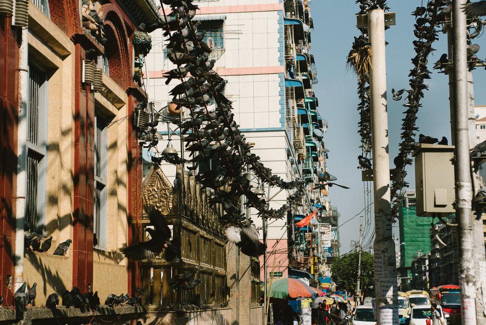 Myanmar2-1510.jpg