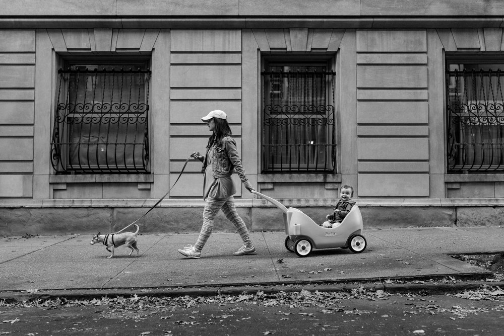 Brooklyn Heights mom walks little dog and pulls baby in Radio Flyer