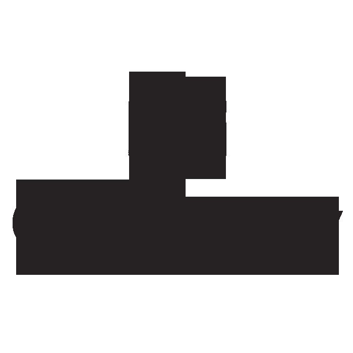 Gadinsky Logo GREY.png
