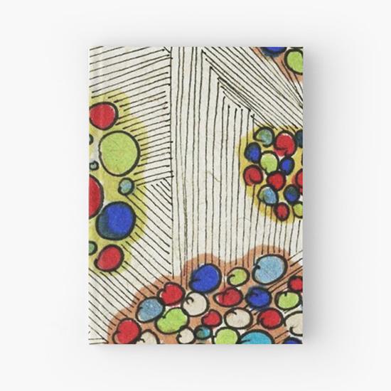 naomi hardcover journal