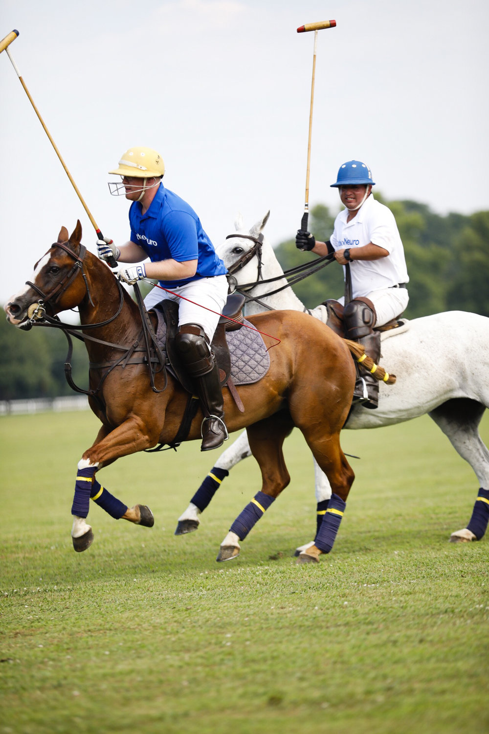polo faves-7.jpg