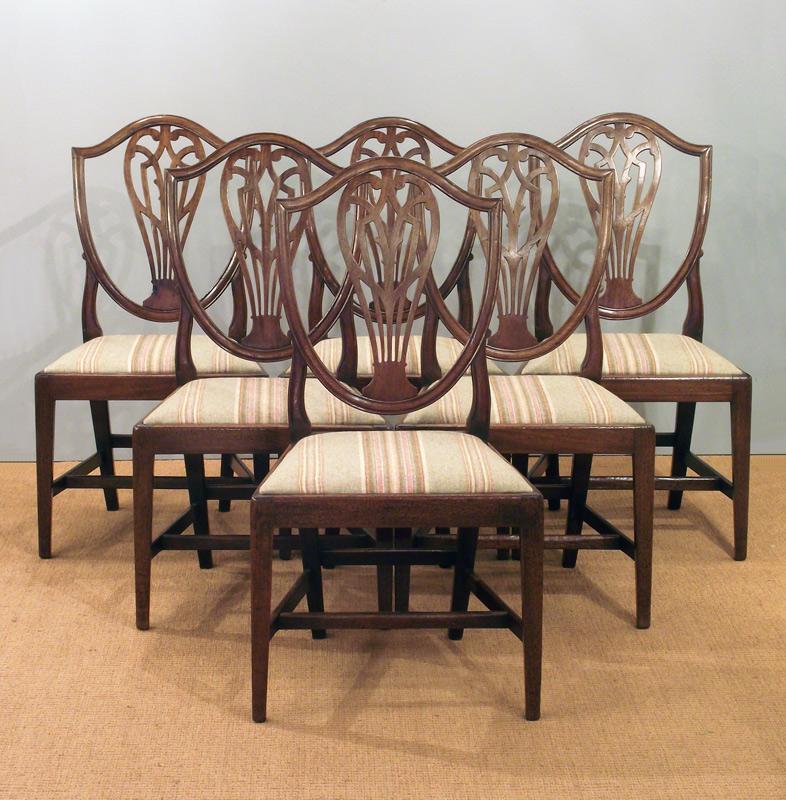 dining chairs mjg interiors