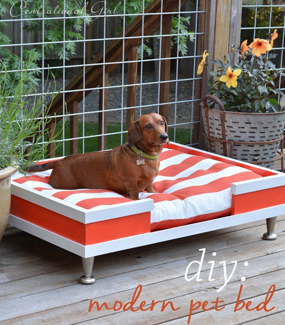 Another fun, vibrant print for a comfy dog bed. Added perk? These sofa beds are portable so whether it's a day for lounging outside, or a Sunday spent inside watching football, your pet and home will be feeling and looking fabulous.