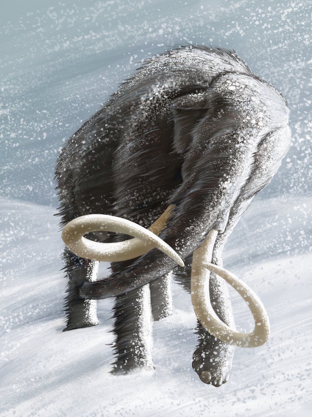 Mammoth in Snow