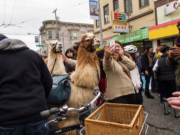 Sunday Streets. Clement Street. San Francisco, CA/ ©Stella Kalaw