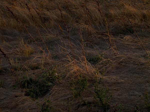 >Cesar Chavez Park at Sunset 02. Berkeley, CA/ ©Stella Kalaw