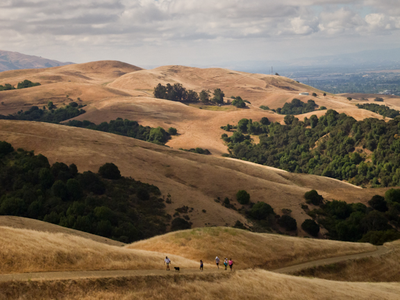 High Ridge Loop Trail. Dry Creek Pioneer Regional Park. Hayward, CA./ ©Stella Kalaw