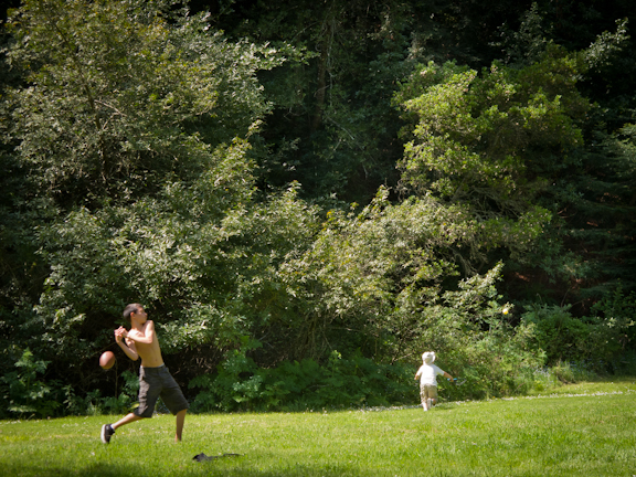 Redwood Regional Park. Oakland, CA/ ©Stella Kalaw