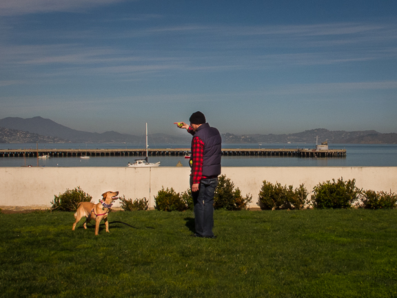 Dog trainer. Aquatic Park. San Francisco, CA/ ©Stella Kalaw
