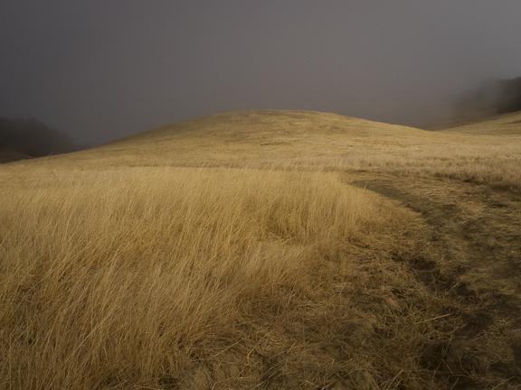 Morgan Territory Regional Preserve. Livermore, CA./ ©Stella Kalaw