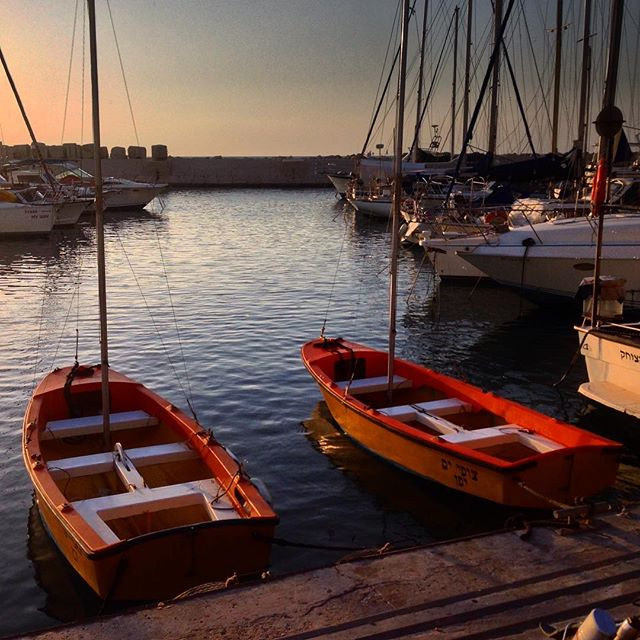 Row row row | Earlier this month at #Jaffa port.