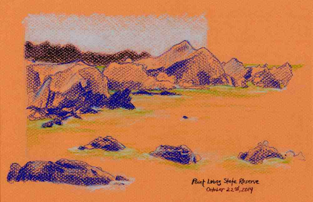 Point Lobos Study