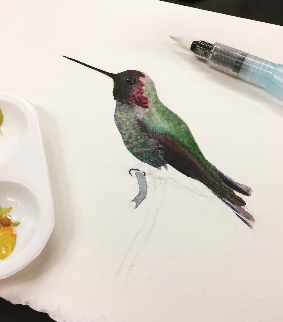 Hummingbird Demo