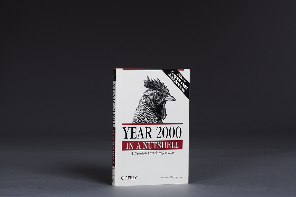 Year 2000 In a Nutshell - A Desktop Quick Reference - 0394 Cover.jpg