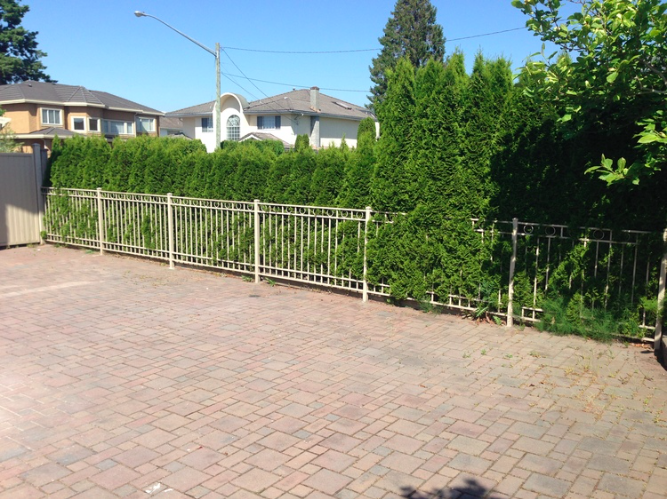 "42"" high picket railing with rings, Burnaby, BC"