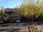 Sacramento   Serving Northern California & Northwestern Nevada  13620 Lincoln Way, Suite 100 Auburn, CA 95603  T 530 889-6120 F 530 885-4040